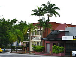 Veitchia joannis in Cairns, Queensland.jpg