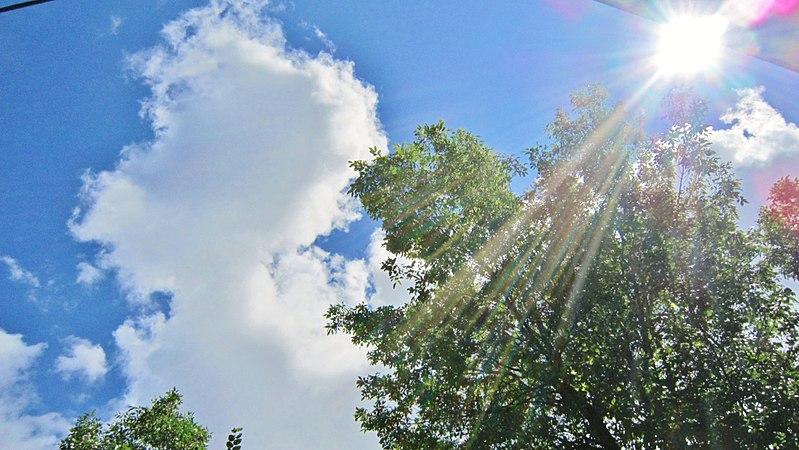 File:Very hot sunshine of july. Chaud soleil de canicule de juillet - panoramio.jpg