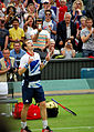 Victory Andy Murray.jpg