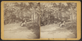 View in Central Park, from Robert N. Dennis collection of stereoscopic views 4.png