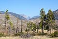 View of Yosemite Valley from Foresta - Flickr - daveynin.jpg