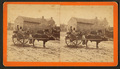 View of men sitting on ox cart, Monticello, Florida, from Robert N. Dennis collection of stereoscopic views.png
