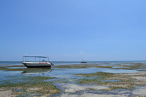 View out to sea on Nyali Beach next to the Voyager Beach Resort during low tide and still conditions in Mombasa, Kenya.jpg