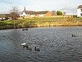 Village pond and green, Hett - geograph.org.uk - 325455.jpg
