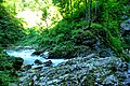 Vintgar Gorge (35423241090).jpg
