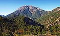 Vivario-Monte d'Oro.jpg