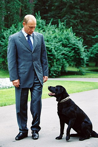 Pets of Vladimir Putin - Konni with President Vladimir Putin in 2001.
