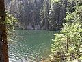 Vylet k Cernemu jezeru Sumava - 9.srpna 2010 194.JPG
