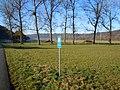 WSG Brunnen Rosenau.jpg