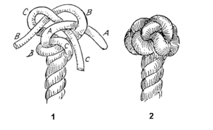 Wall and crown knot - Crowned wall knot