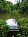 Warslow Hall feeder reservoir - geograph.org.uk - 452859.jpg
