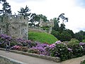 Warwick Castle - The Mound - geograph.org.uk - 15674.jpg