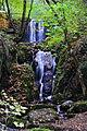 Waterfall (5111295067).jpg