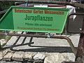 Weissenstein Juragarten 02.JPG