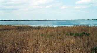 Ramsar sites of Poland - Łuknajno Lake in the Masurian Lake District
