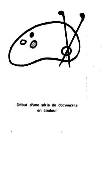 File:Wilde - La Maison de la courtisane, trad. Savine, 1919.djvu