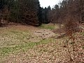 Wilhelmsfeld - Tal der Belschbach 2013-03-10 17-45-56.JPG