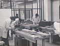 Wood and building technology at TCE (9491567511).jpg
