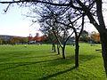 Wuppertal Hardt 2012 038.JPG