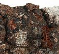 Xocolatlite-rare-09-00b.jpg