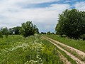 Yaroslavsky District, Yaroslavl Oblast, Russia - panoramio (30).jpg