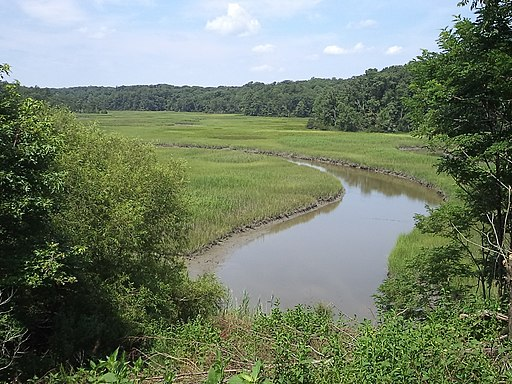 York River State Park (9495027689)