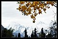 Zhaosu, Ili, Xinjiang, China - panoramio - neverdance (5).jpg