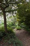 Zicht op tuinpad rondom hoofdgebouw - Roden - 20532144 - RCE