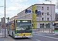 Zielona góra mzk bus autobus 08.jpg