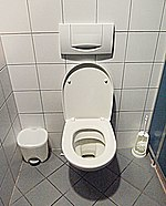 A Western flush toilet with a paper seat cover dispenser, waste basket, and toilet brush near the German-Austrian border