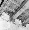 Zwam op houtconstructie - Delft - 20049213 - RCE.jpg