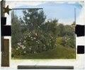 """""""Beacon Hill House,"""" Arthur Curtiss James house, Beacon Hill Road, Newport, Rhode Island. Rose garden LCCN2008679203.tif"""