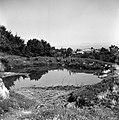 """Mlaka"", Oštrc 1956.jpg"