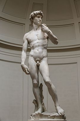 'David' by Michelangelo Fir JBU004.jpg