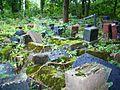Žaliakalnio žydų kapinėse 2012.JPG