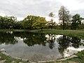 Большой Круглый пруд, Луговой парк 3.jpg