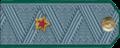 Дзяржаўны саветнік мытнай службы III рангу.png