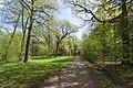 Майские дубы в парке Сергиевка.jpg