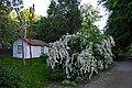 Музей-садиба М. Коцюбинського P1120506.jpg