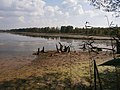 На Ирдынских болотах - panoramio.jpg