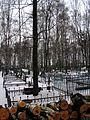 Новолужинское кладбище - panoramio.jpg