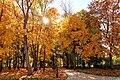 Парк Кочубеївський, жовтень.jpg
