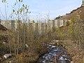 Платина на реке Карагалинка - panoramio (5).jpg