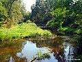 Река Сарьянка - panoramio.jpg