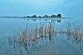 Туманное утро на озере Селигер.jpg