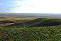 Урочище Утиная гора 14 - panoramio.jpg