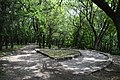 Фрагмент аллеи в верхней части Лечебного парка, Ессентуки.jpg
