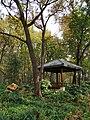 中山植物园(南园)景色12.jpg