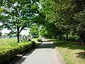 多摩川緑地福生南公園.JPG