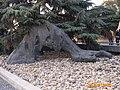 大屠杀纪念馆内象征被活埋人从土中伸出求救的手 - panoramio.jpg